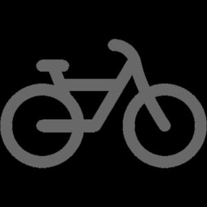bike2 gray